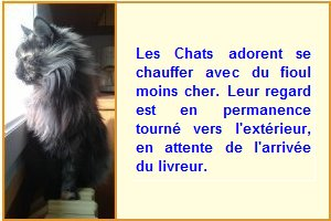 chat-marie